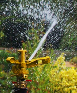 a rotary sprinkler installed by our Grand Prairie sprinkler repair service
